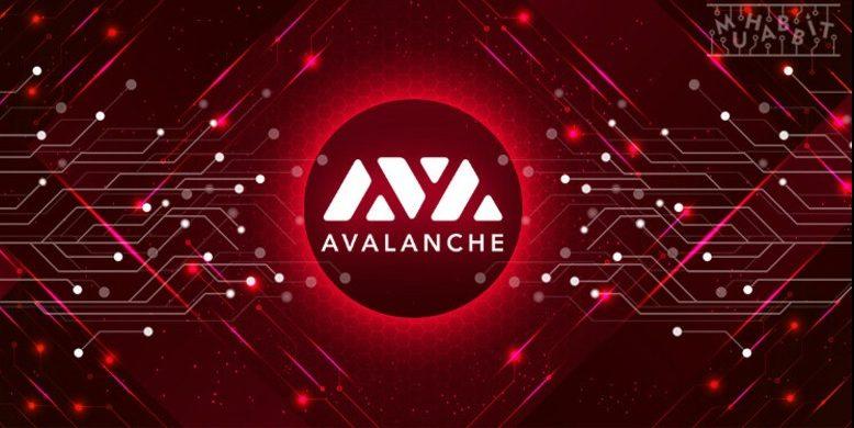 DeFi Avalanche (AVAX)